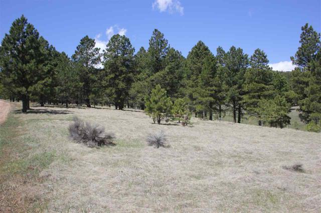 TBD Kaiser Rd, Eagle Nest, NM 87718 (MLS #103148) :: Page Sullivan Group | Coldwell Banker Mountain Properties