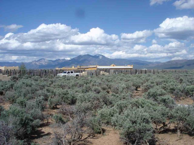 Off Cactus Flower Rd, Ranchos de Taos, NM 87557 (MLS #103160) :: Page Sullivan Group | Coldwell Banker Mountain Properties