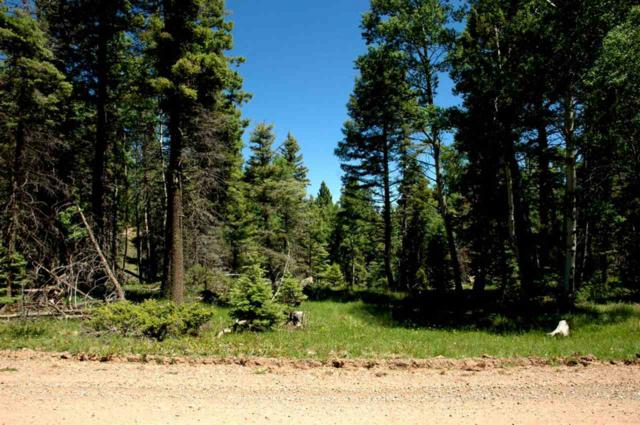 Lot 363 Vail Loop, Angel Fire, NM 87710 (MLS #103166) :: The Chisum Realty Group