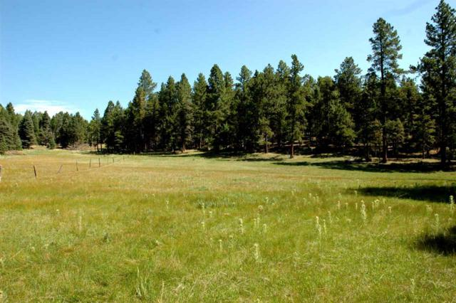 Norte Rd, Angel Fire, NM 87710 (MLS #103173) :: Angel Fire Real Estate & Land Co.
