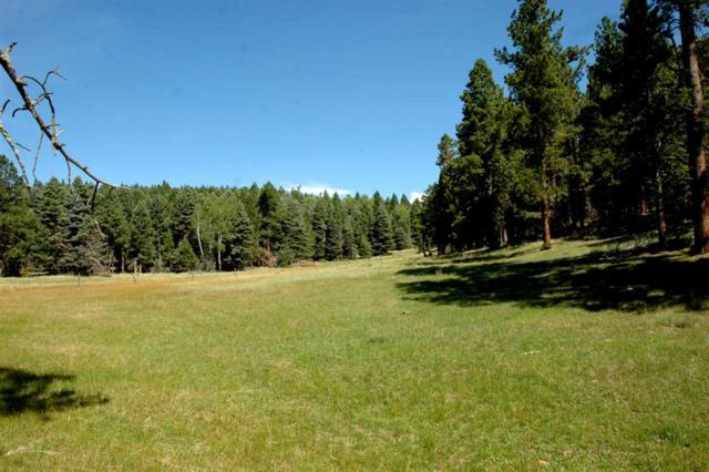 Tract 2 Norte Road, Angel Fire, NM 87710 (MLS #103174) :: Angel Fire Real Estate & Land Co.