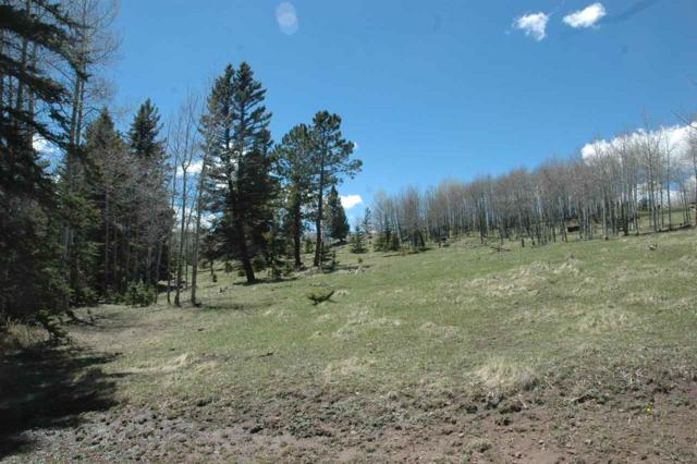 Lot 189 Meadow Glen, Angel Fire, NM 87710 (MLS #103176) :: Angel Fire Real Estate & Land Co.