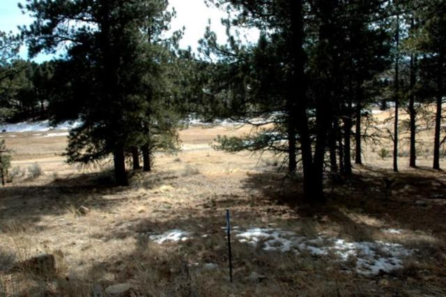 Lot 1197 Colonial Trail, Angel Fire, NM 87710 (MLS #103177) :: Angel Fire Real Estate & Land Co.