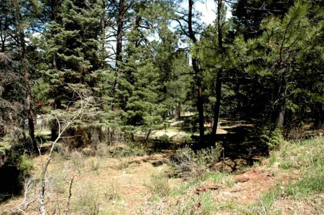 Lot 73 Mammouth Mountain Road, Angel Fire, NM 87710 (MLS #103180) :: Page Sullivan Group | Coldwell Banker Mountain Properties