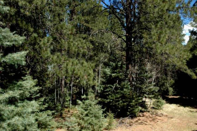Lot 31 Snowmass Rd, Angel Fire, NM 87710 (MLS #103184) :: Page Sullivan Group | Coldwell Banker Mountain Properties