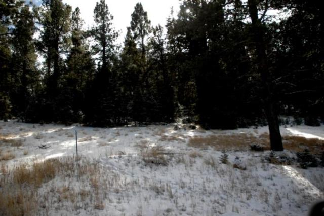 132 E San Andres Dr, Angel Fire, NM 87710 (MLS #103186) :: The Chisum Realty Group