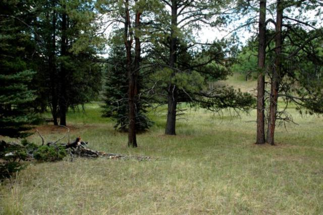 Lot 1183 Pleasant Valley Place, Angel Fire, NM 87710 (MLS #103188) :: The Chisum Realty Group