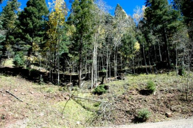 Lot 422 El Camino Real, Angel Fire, NM 87710 (MLS #103193) :: Page Sullivan Group | Coldwell Banker Mountain Properties
