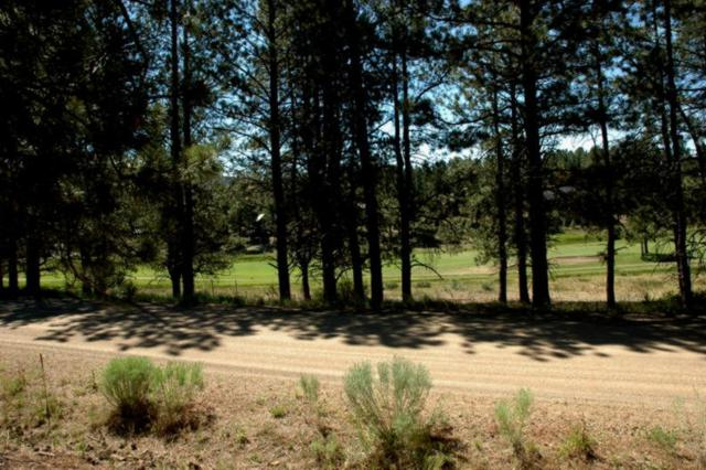 Lot 1242 Colonial Trail, Angel Fire, NM 87710 (MLS #103196) :: Page Sullivan Group