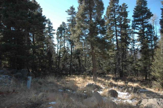 Lot 1447 Cheerful Way, Angel Fire, NM 87710 (MLS #103207) :: Page Sullivan Group | Coldwell Banker Mountain Properties
