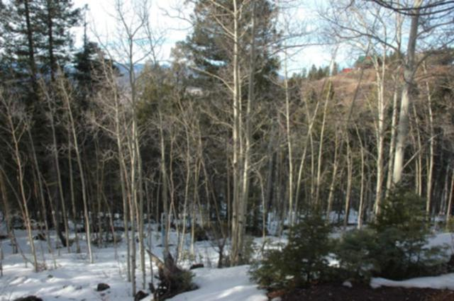 Lot 205 El Camino Real, Angel Fire, NM 87710 (MLS #103210) :: The Chisum Realty Group