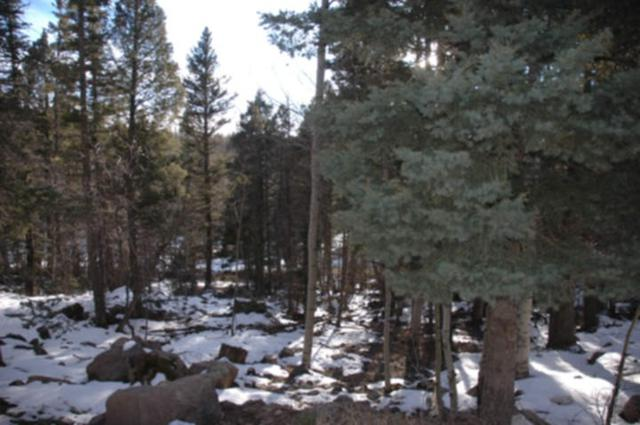 Lot 679 El Camino Real, Angel Fire, NM 87710 (MLS #103217) :: Page Sullivan Group | Coldwell Banker Mountain Properties