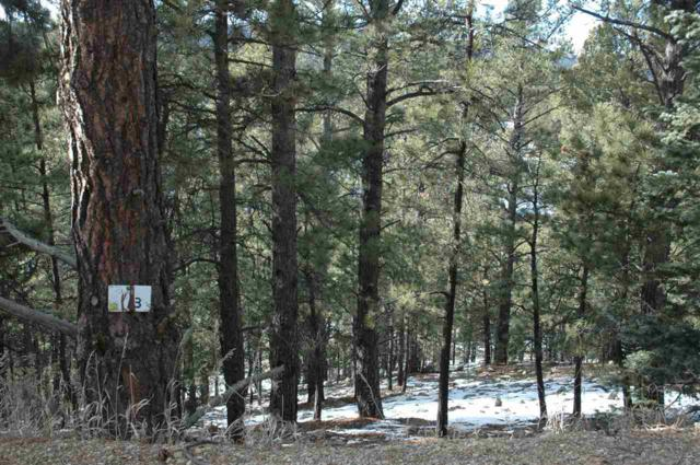 Lot 13 Snowmass Rd, Angel Fire, NM 87710 (MLS #103218) :: Page Sullivan Group | Coldwell Banker Mountain Properties
