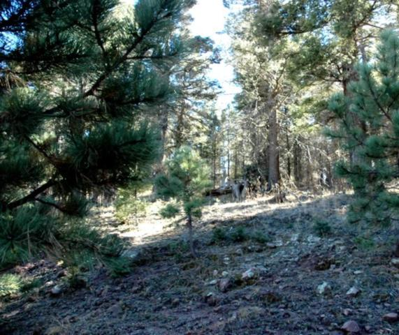 lot 96 Back Basin Rd, Angel Fire, NM 87710 (MLS #103225) :: Page Sullivan Group | Coldwell Banker Mountain Properties