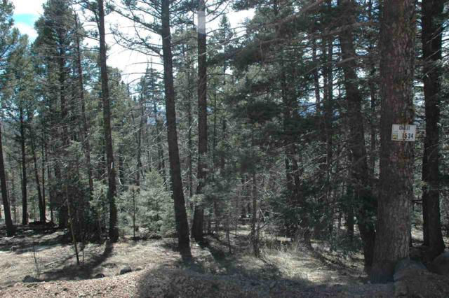 Lot 1534 El Camino Real, Angel Fire, NM 87710 (MLS #103229) :: Page Sullivan Group | Coldwell Banker Mountain Properties