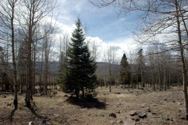 Lot 1013 El Camino Real, Angel Fire, NM 87710 (MLS #103231) :: Page Sullivan Group | Coldwell Banker Mountain Properties