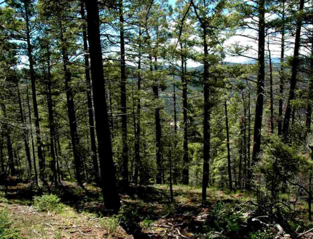 Lot 400 Vail Loop, Angel Fire, NM 87710 (MLS #103238) :: Page Sullivan Group | Coldwell Banker Mountain Properties