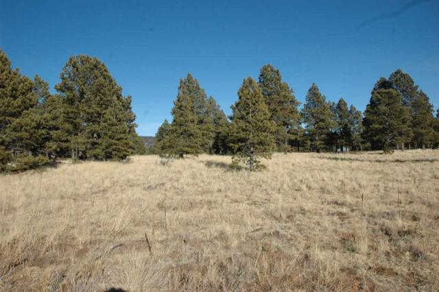 Lot 11 Camino De Ruth, Angel Fire, NM 87710 (MLS #103240) :: Page Sullivan Group