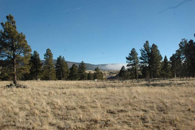 Lot 12 Camino De Ruth, Angel Fire, NM 87710 (MLS #103241) :: Page Sullivan Group