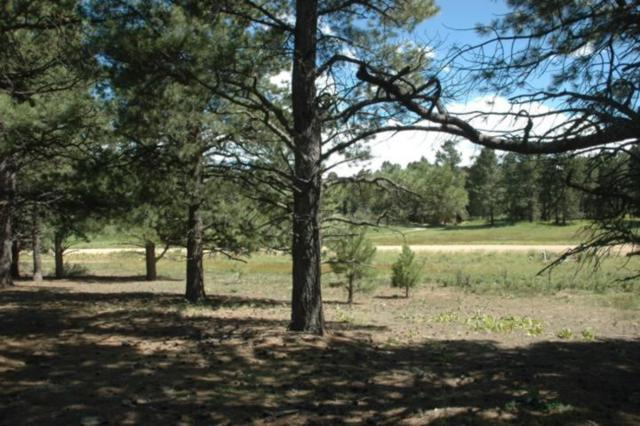 Lot 1251 Nelson Circle, Angel Fire, NM 87710 (MLS #103245) :: Angel Fire Real Estate & Land Co.