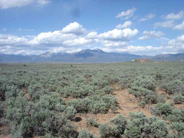 Adj to Cielo San Antonio, Taos, NM 87571 (MLS #103263) :: Angel Fire Real Estate & Land Co.