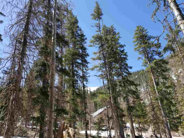 28 Zaps Road, Taos Ski Valley, NM 87525 (MLS #103278) :: The Chisum Realty Group