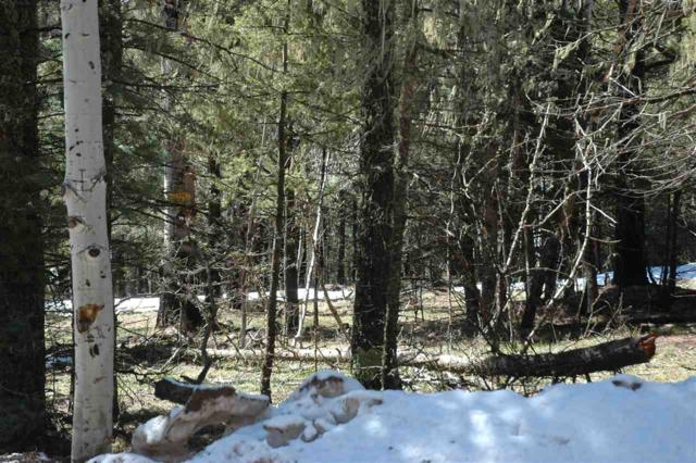 d 25 Alpine Lake Terrace, Angel Fire, NM 87710 (MLS #103309) :: Angel Fire Real Estate & Land Co.