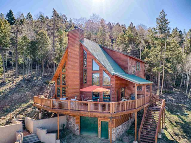 301 El Camino Real, Angel Fire, NM 87710 (MLS #103313) :: Page Sullivan Group | Coldwell Banker Mountain Properties
