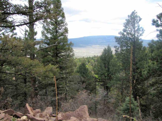Lot 54 Taos Pines Ranch, Angel Fire, NM 87710 (MLS #103318) :: The Chisum Realty Group