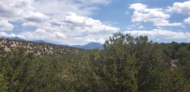 Lot L14 Sandia Canyon Road, Arroyo Hondo, NM 87513 (MLS #103326) :: Angel Fire Real Estate & Land Co.