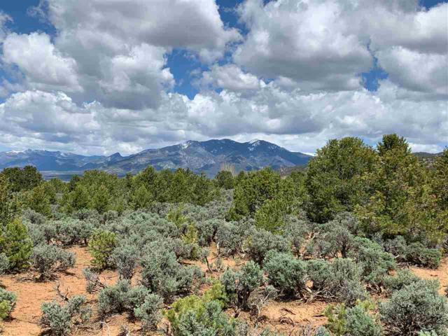 Off Verde Road, Taos, NM 87571 (MLS #103330) :: The Chisum Realty Group