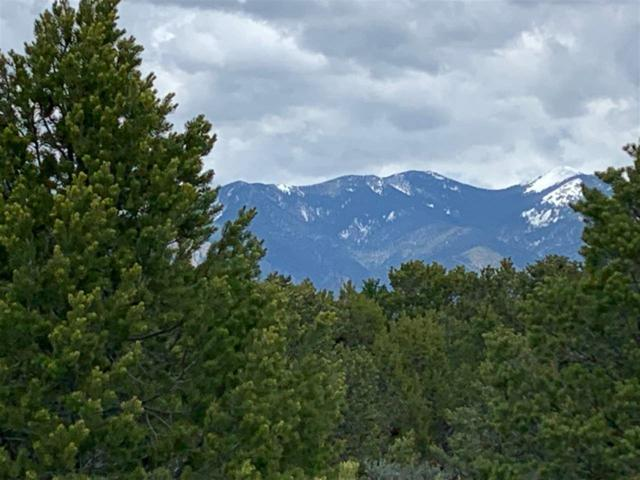 Off Verde Rd, Taos, NM 87529 (MLS #103332) :: The Chisum Realty Group