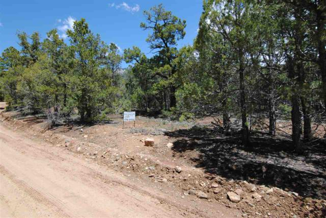Gallina Canyon Rd, Valdez, NM 87580 (MLS #103333) :: Page Sullivan Group | Coldwell Banker Mountain Properties