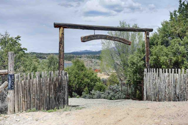 173 Acequia Madre Del Llano, Arroyo Hondo, NM 87513 (MLS #103335) :: Page Sullivan Group | Coldwell Banker Mountain Properties