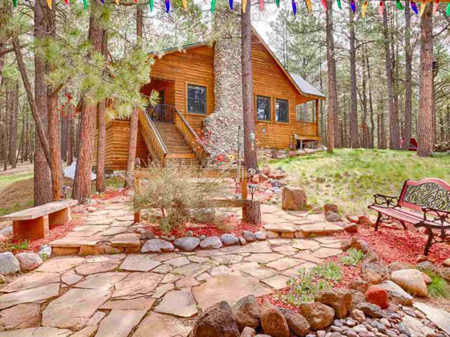 11 Valley Court, Angel Fire, NM 87710 (MLS #103363) :: Angel Fire Real Estate & Land Co.