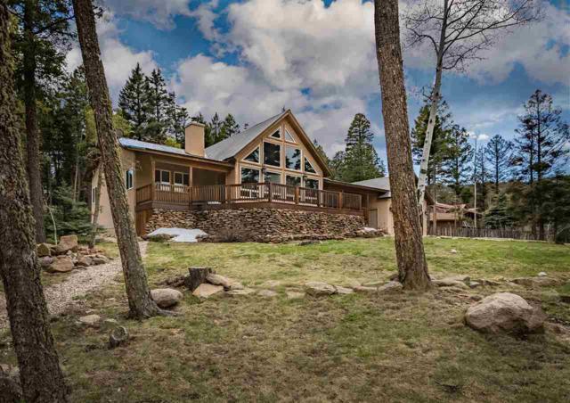 327 Via Del Rey, Angel Fire, NM 87710 (MLS #103370) :: Angel Fire Real Estate & Land Co.