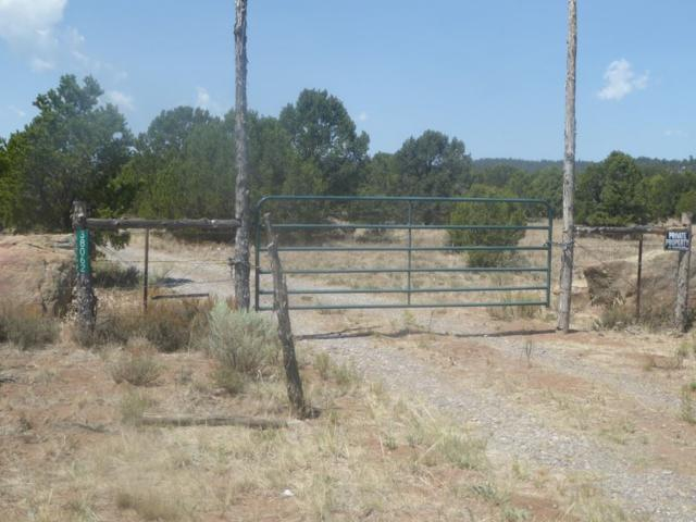 38082 Hwy 285, Tres Piedras, NM 87577 (MLS #103395) :: The Chisum Realty Group