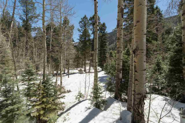 1318 and 1320 State Hwy 150, Taos Ski Valley, NM 87525 (MLS #103403) :: The Chisum Realty Group