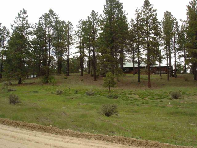 Lot 46 Blue Spruce Lane, Taos, NM 87571 (MLS #103410) :: Page Sullivan Group | Coldwell Banker Mountain Properties
