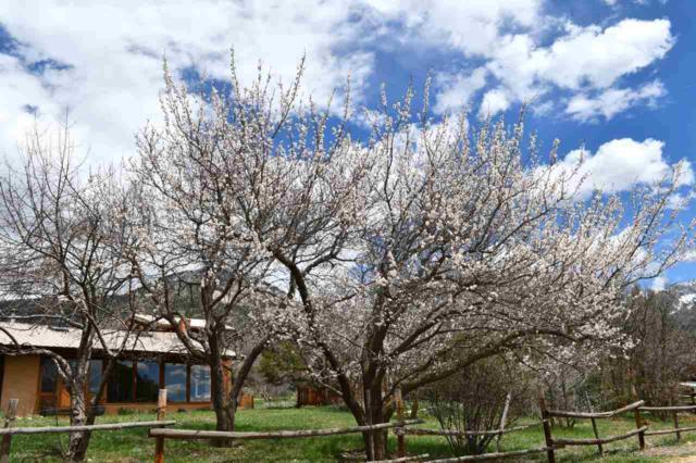 23 Robertos Lane, Taos, NM 87514 (MLS #103423) :: Angel Fire Real Estate & Land Co.