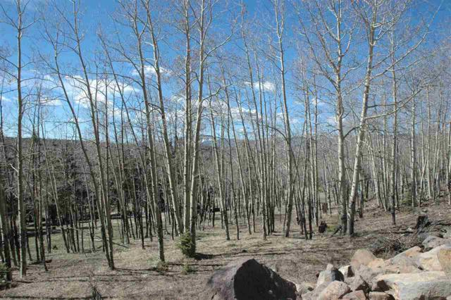 1051 Starshine Over, Angel Fire, NM 87711 (MLS #103426) :: Angel Fire Real Estate & Land Co.