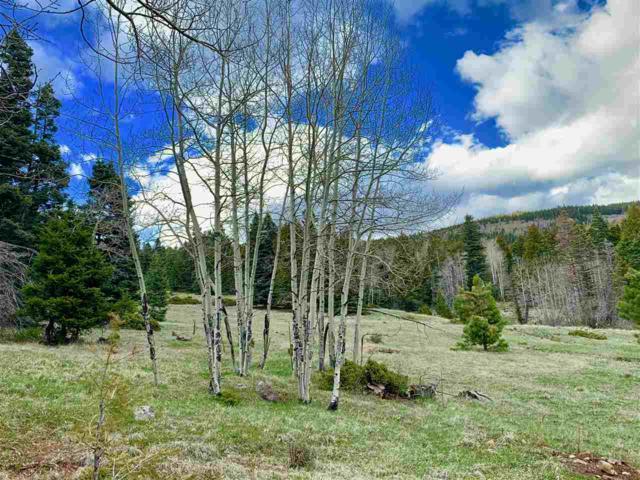 Lot 1022 Starshine Overlook, Angel Fire, NM 87710 (MLS #103427) :: Angel Fire Real Estate & Land Co.