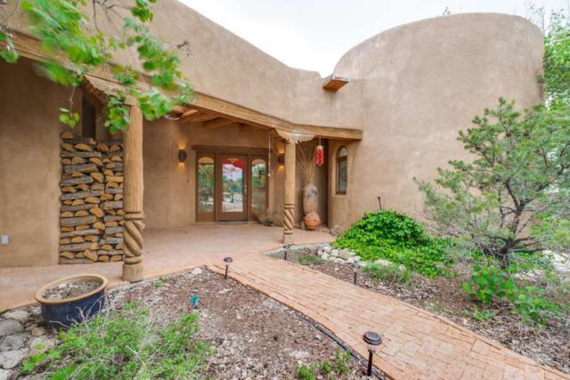 1007 Camino Del Monte, Taos, NM 87571 (MLS #103431) :: Page Sullivan Group