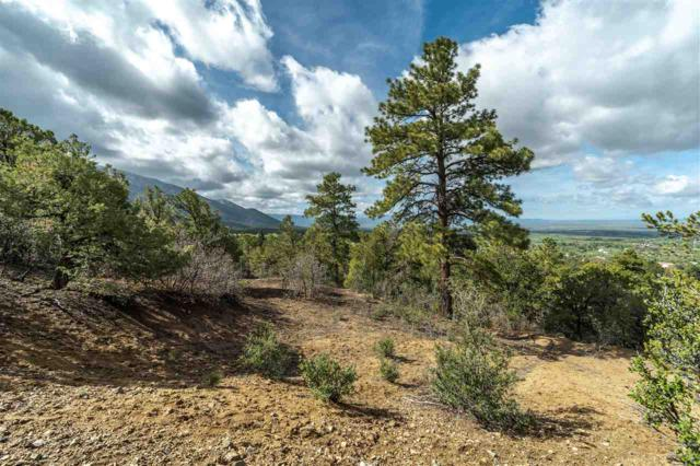 End of Walking Rain Road, Arroyo Seco, NM 87514 (MLS #103445) :: Page Sullivan Group | Coldwell Banker Mountain Properties