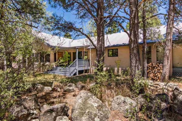 51 Susan Lane, Angel Fire, NM 87710 (MLS #103447) :: Page Sullivan Group | Coldwell Banker Mountain Properties