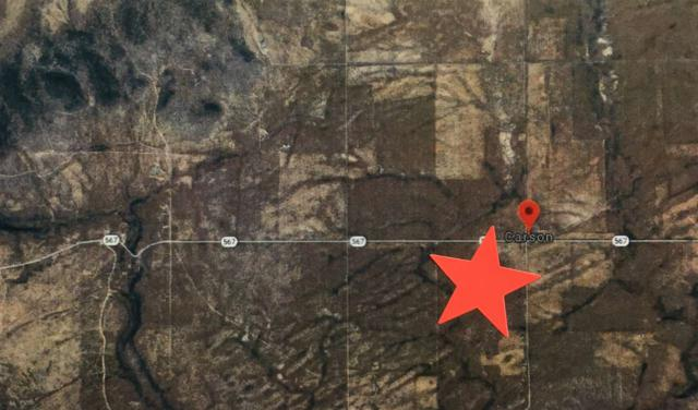 Off Highway 567, Carson, NM 87517 (MLS #103498) :: The Chisum Realty Group