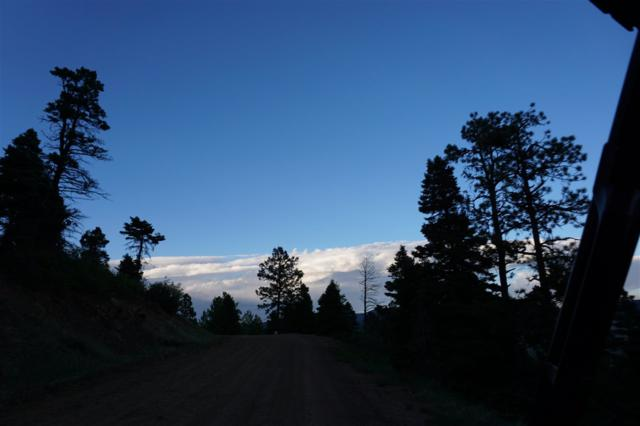 62 Back Basin Road, Angel Fire, NM 87710 (MLS #103508) :: Angel Fire Real Estate & Land Co.