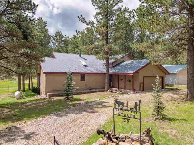 29 Woodlands Dr, Angel Fire, NM 87710 (MLS #103513) :: The Chisum Realty Group