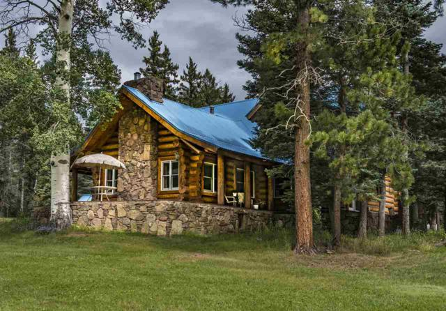 53 Forest Road 76, Angel Fire, NM 87710 (MLS #103522) :: The Chisum Realty Group