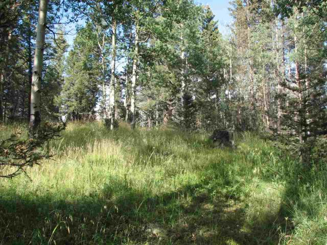 Lot 88 Elk Horn Drive, Angel Fire, NM 87710 (MLS #103525) :: Page Sullivan Group